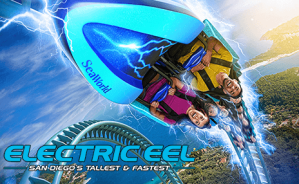 ElectricEel_464x286